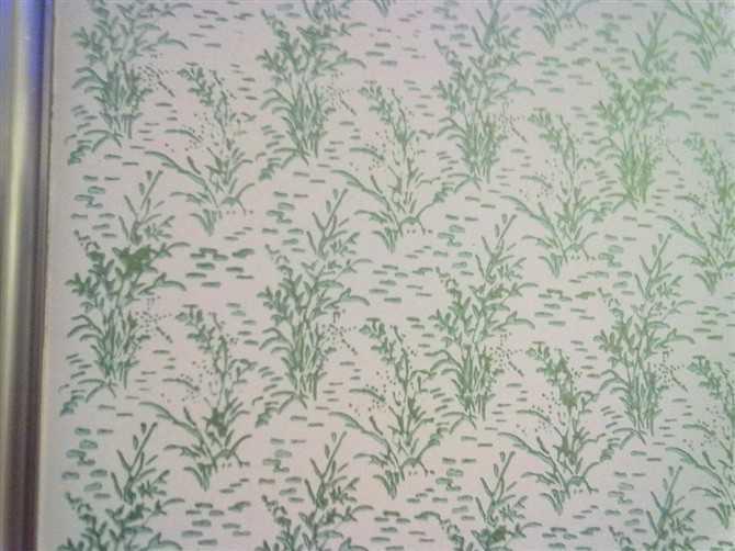 海贝诗贝壳粉